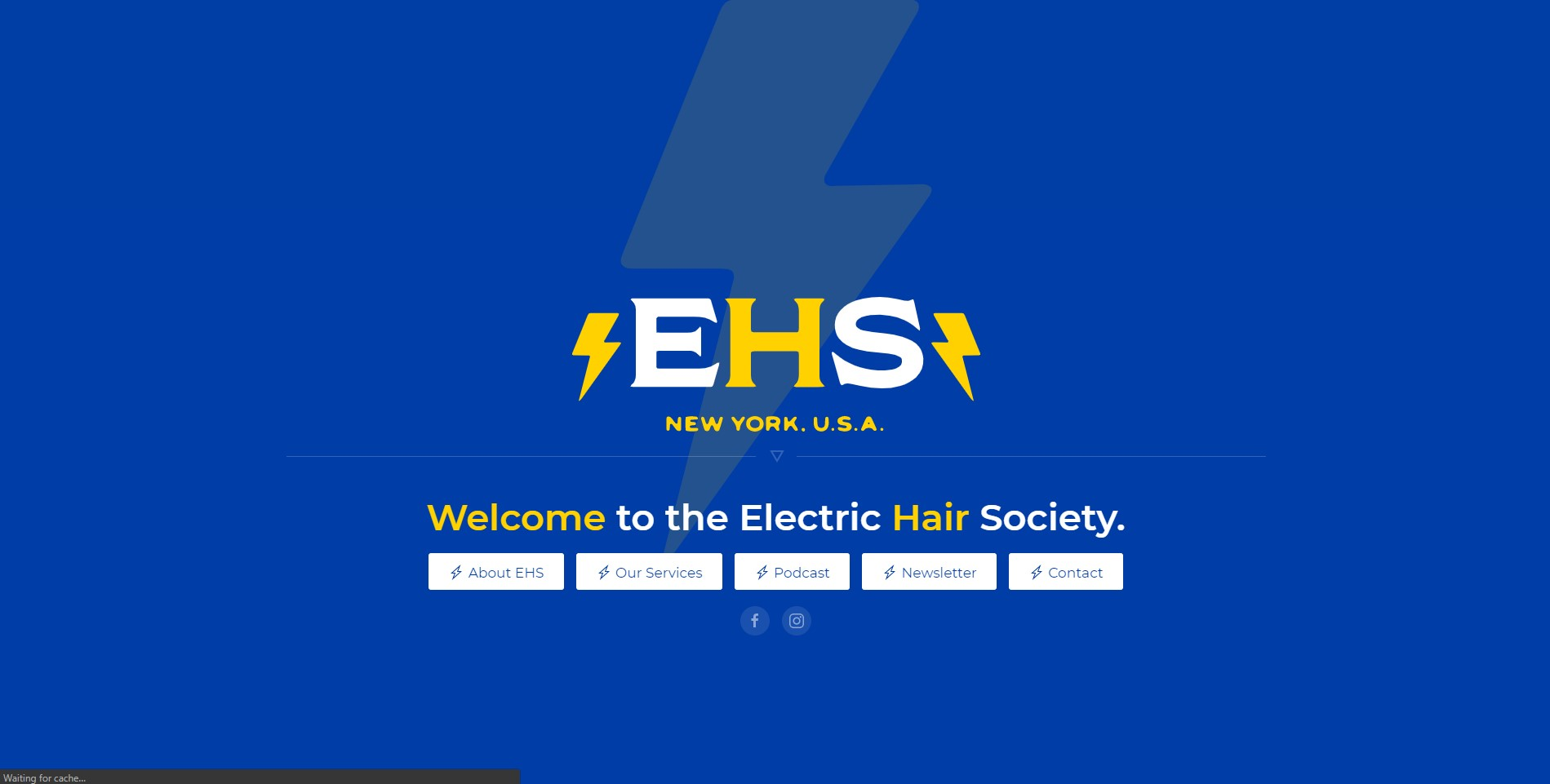 Electric Hair Society