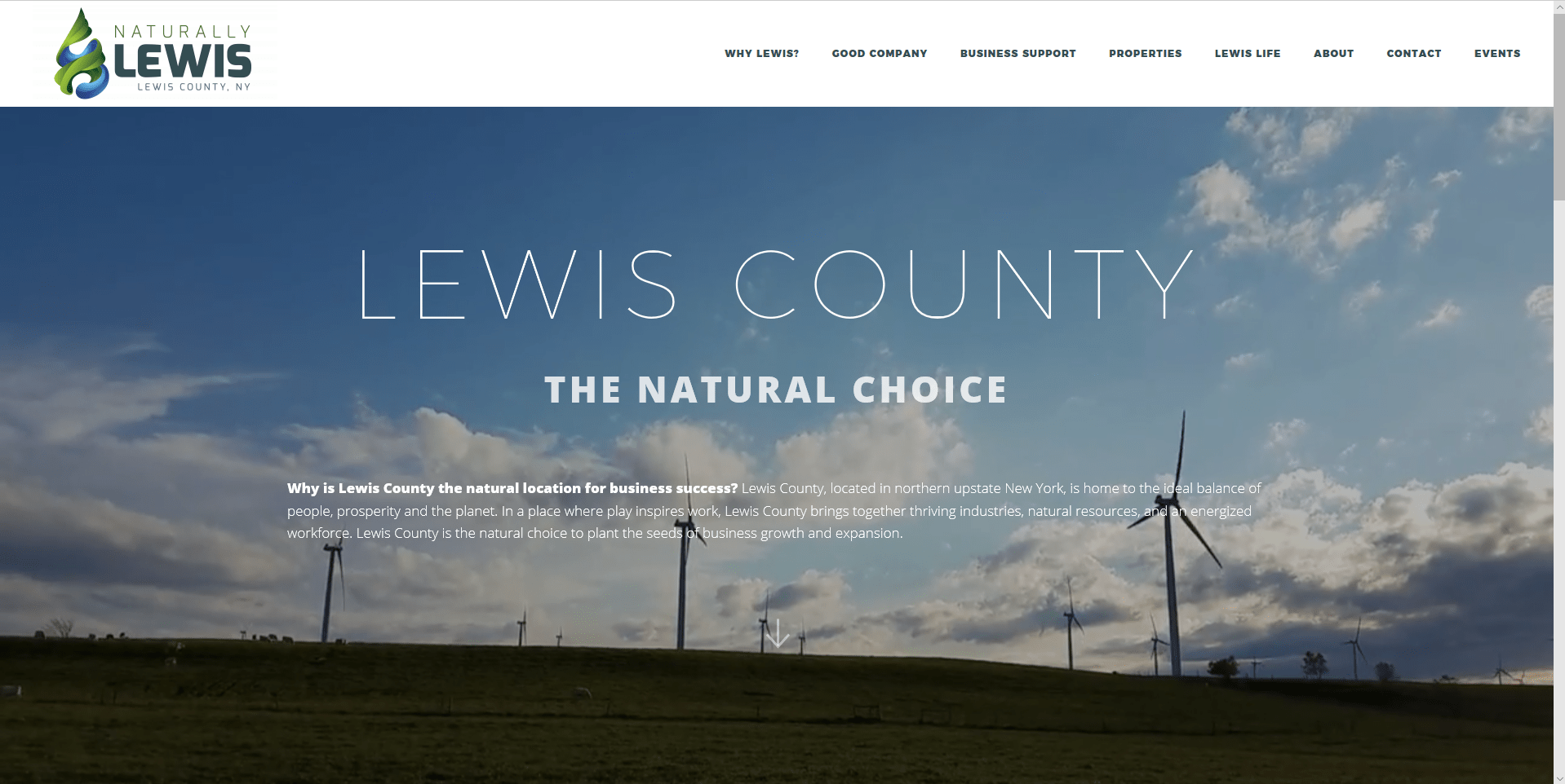 Lewis County Economic Development (Naturally Lewis)